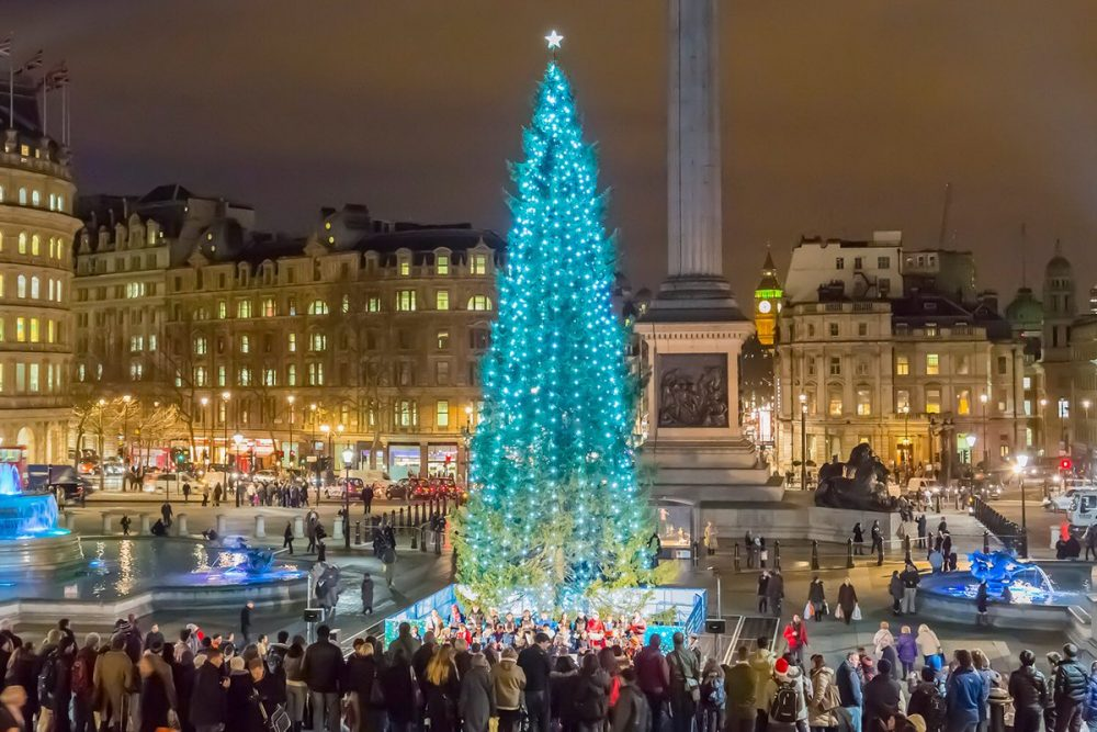 Christmas tree ceremony, festivals in london